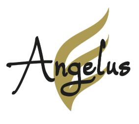 Logo Angelus Group